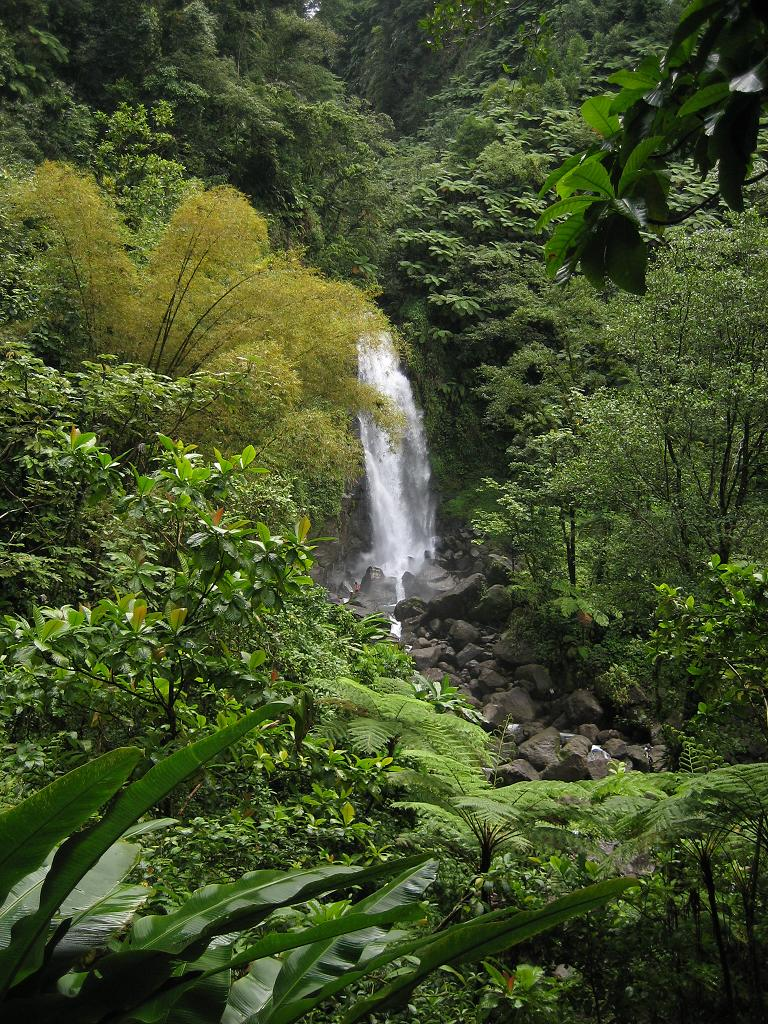 Dominica waterfall
