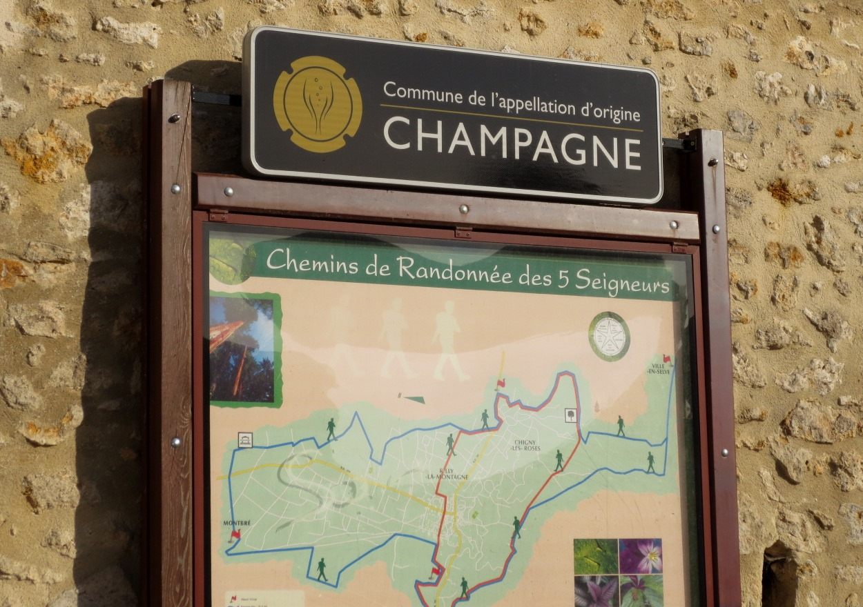 champagne-france-travelgrip- (2)