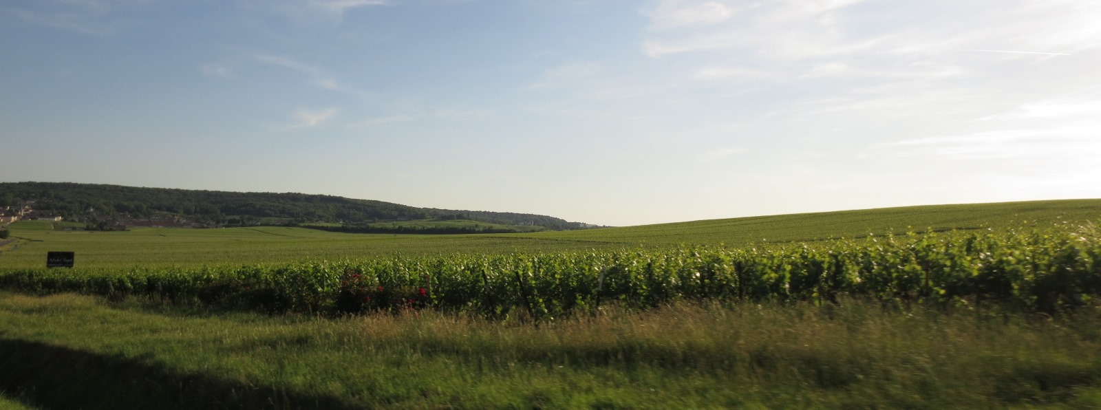 champagne-france-travelgrip- (3)