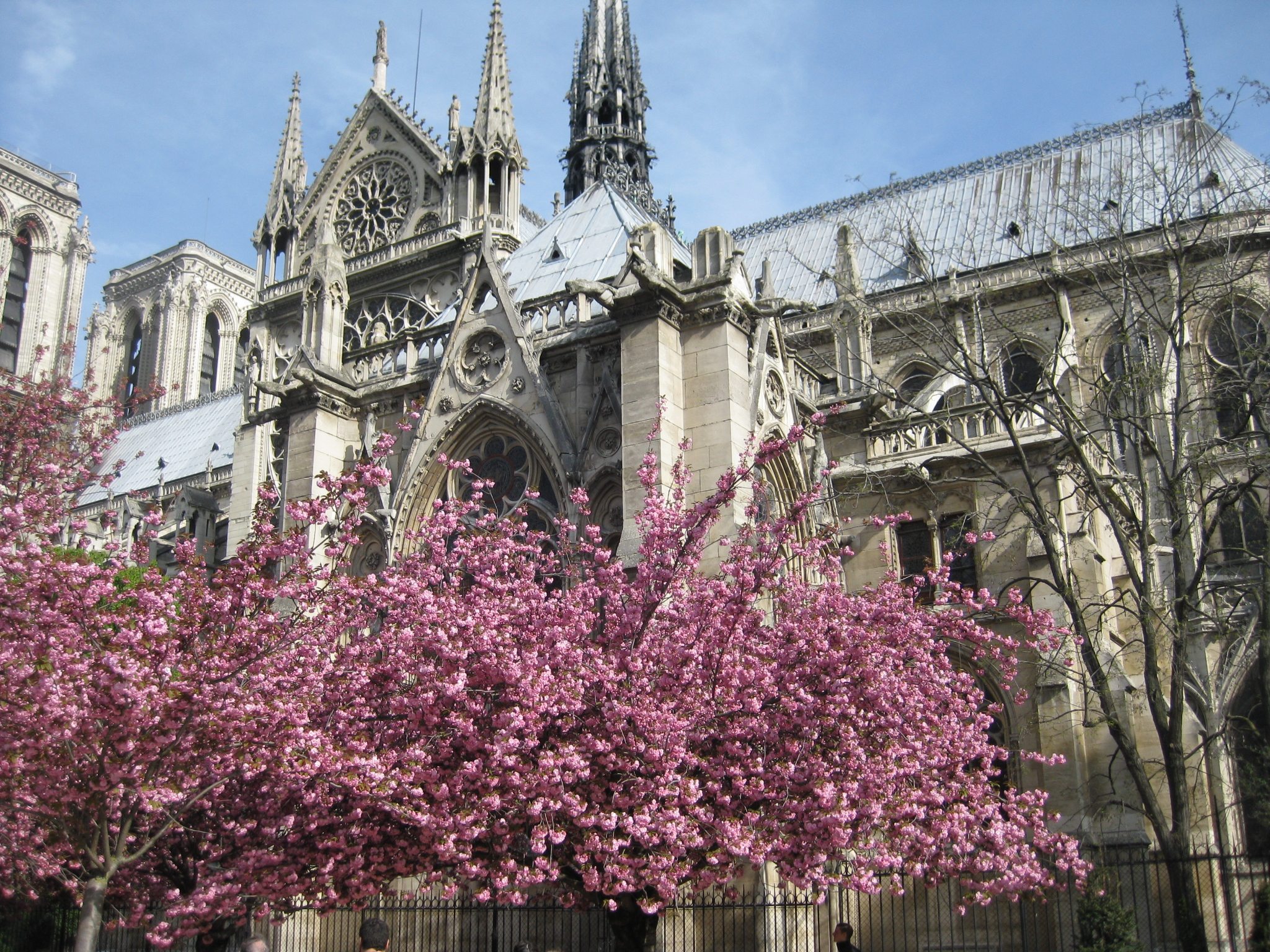 paris-france-travelgrip- (4)