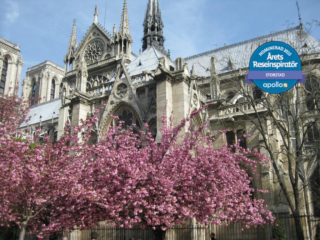 mot-varen-i-paris-france-travelgrip