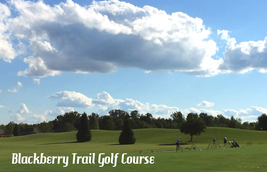 Backberry-Golf-Florence-Alabama-TravelGrip