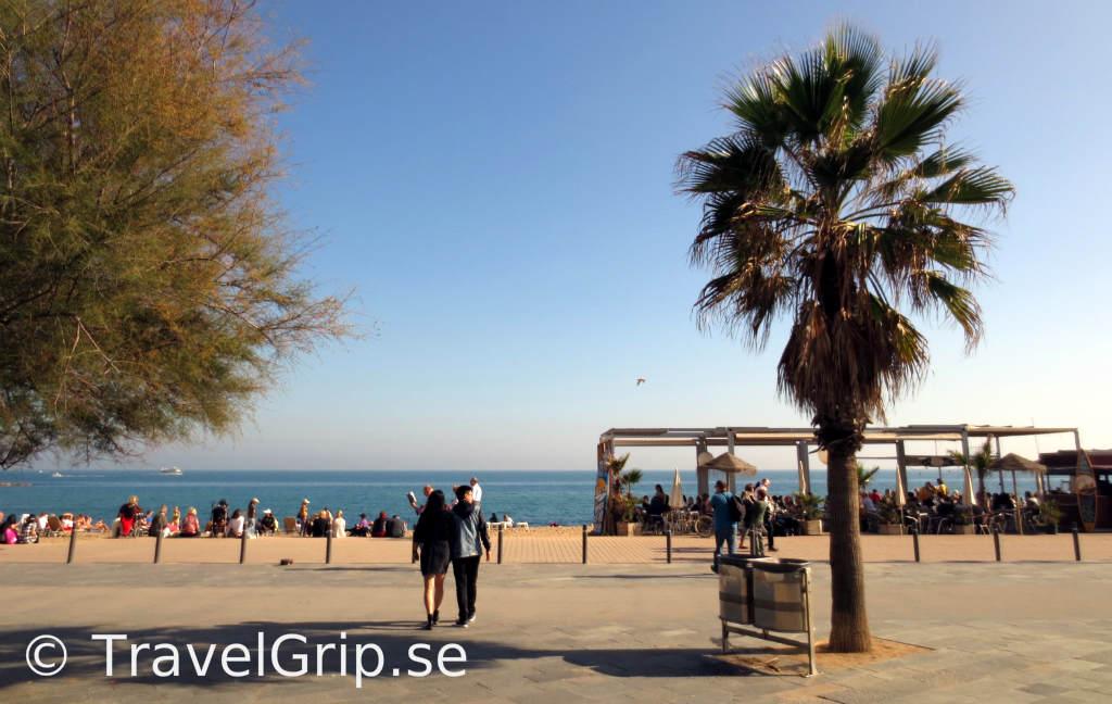 Barceloneta-strand-Barcelona-TravelGrip