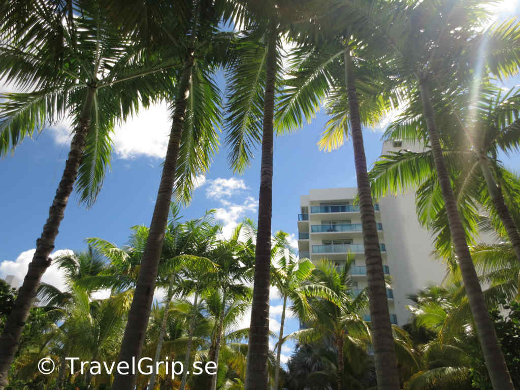 Fort-Lauderdale-i-Florida-TravelGrip