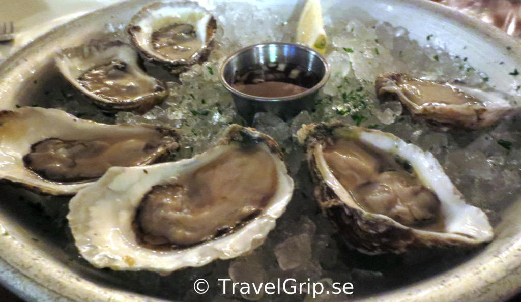 ostron-GB-Oyster-Bar-Florida-TravelGrip
