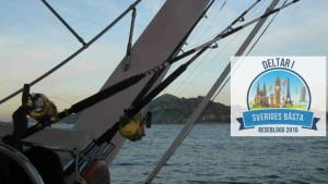 DJuphavsfiske-Cabos-Mexiko-TravelGrip- (1)