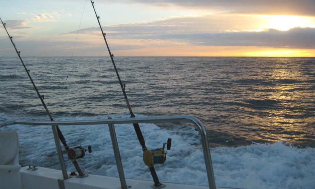 DJuphavsfiske-Cabos-Mexiko-TravelGrip- (2)
