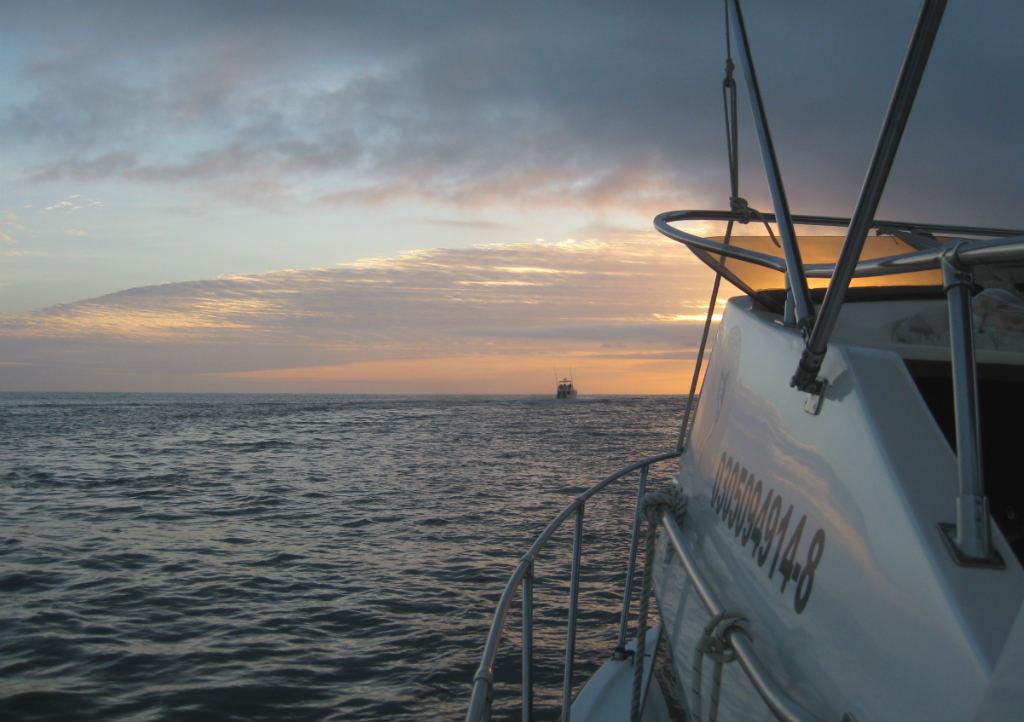 Djuphavsfiske-Cabo-San-Lucas-TravelGrip- (4)