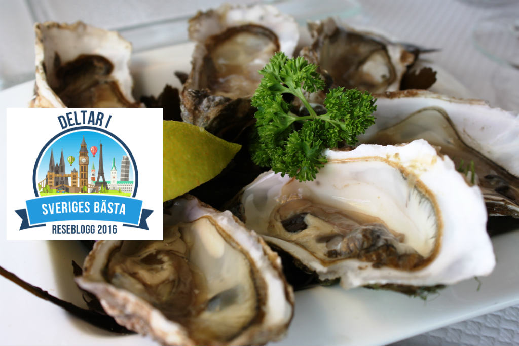 ostron-oysters-huitres-normandie-travelgrip