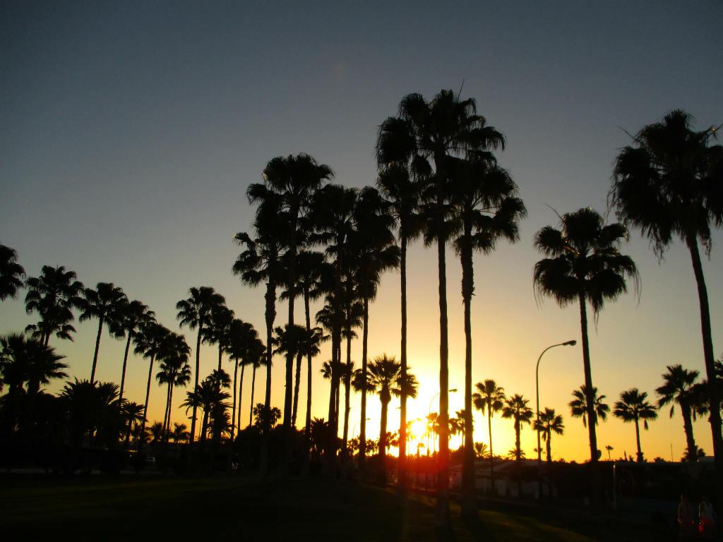 Solnedgång-Maspalomas-Golf-Gran-Canaria-TravelGrip