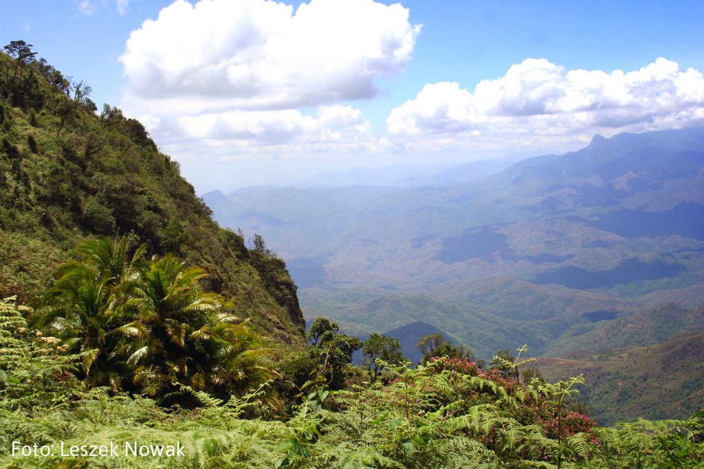 Udzungwa-berg-tanzania-TravelGrip (2)