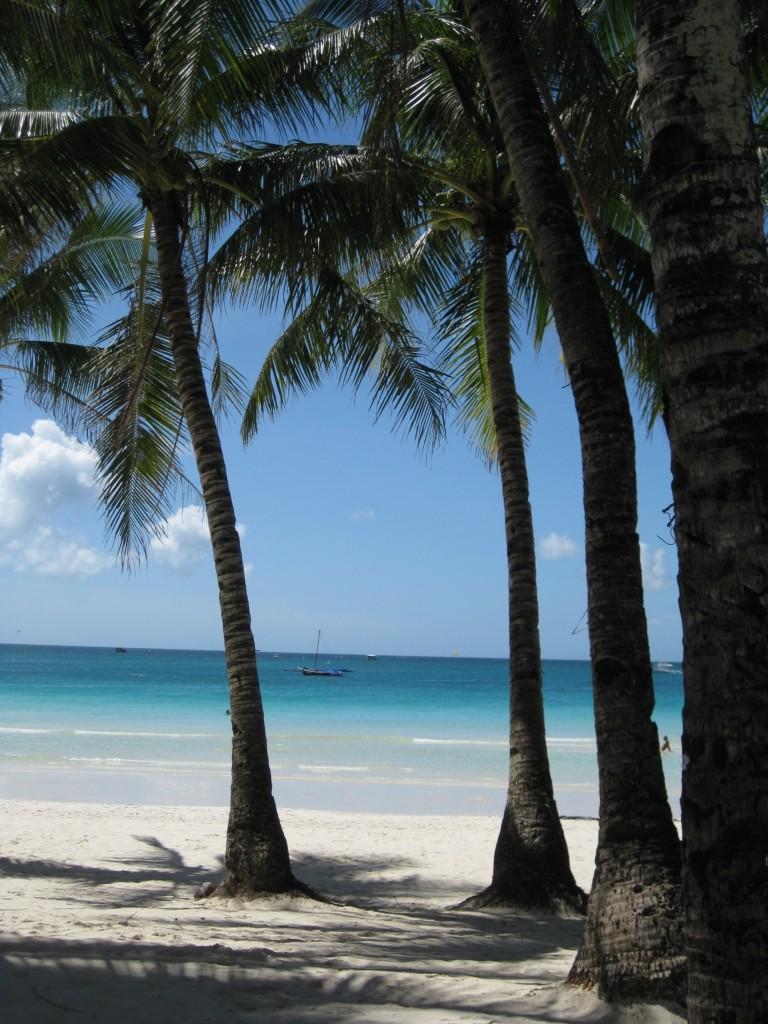 travelgrip-boracay- palmtrees