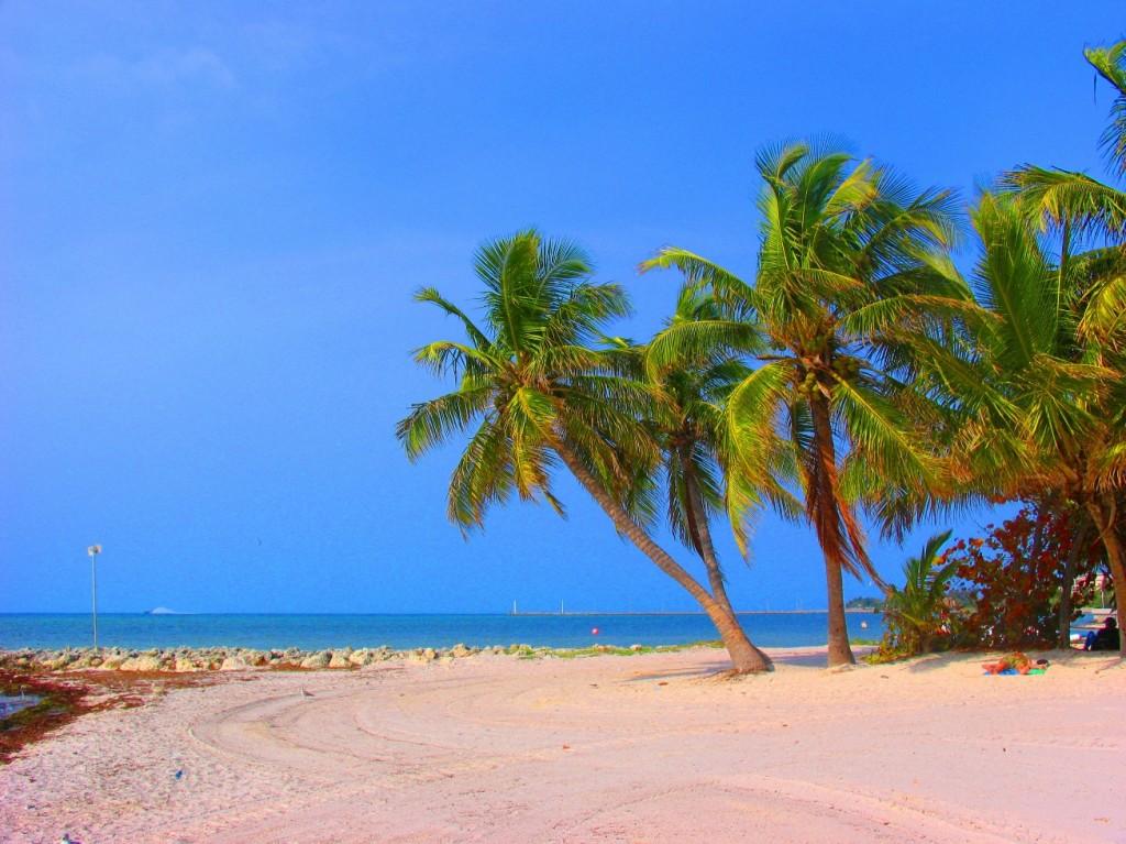 Soldagar på Grand Bahama