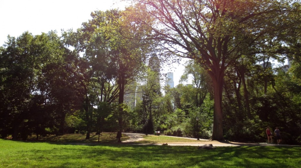 Central-Park-manhattan-nyc-travelgrip- (1)