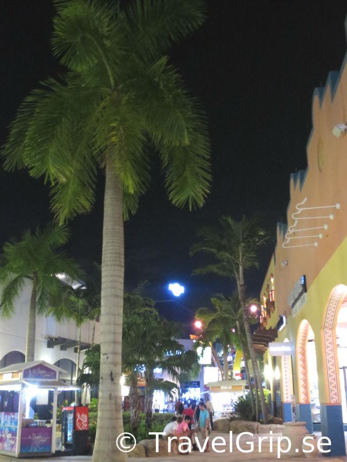 Hard-Rock-Seminole-Hollywood-Florida-TravelGrip