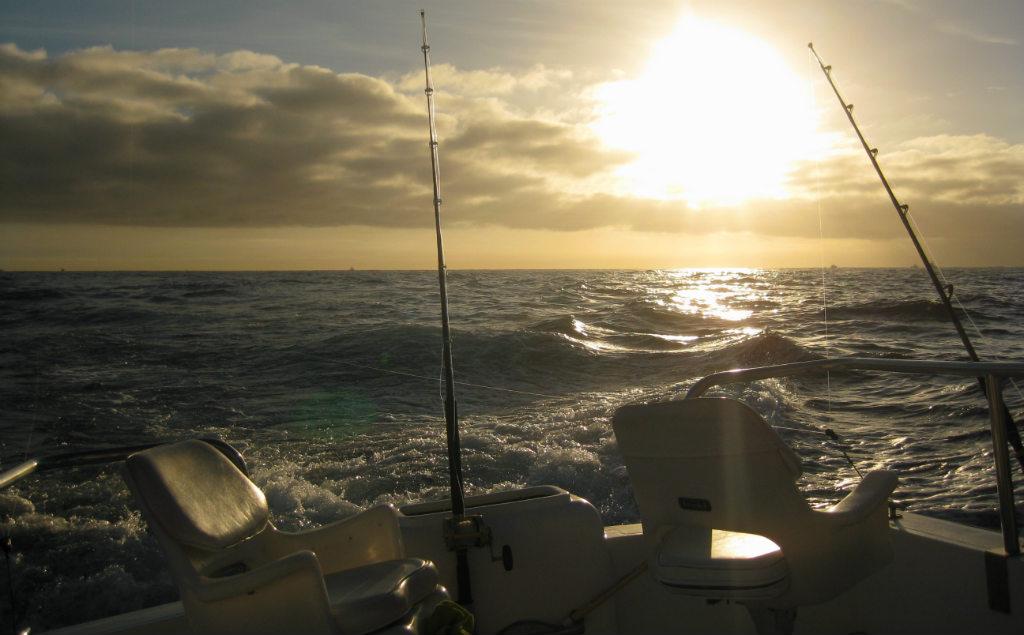 Djuphavsfiske-Los-Cabos-TravelGrip- (3)