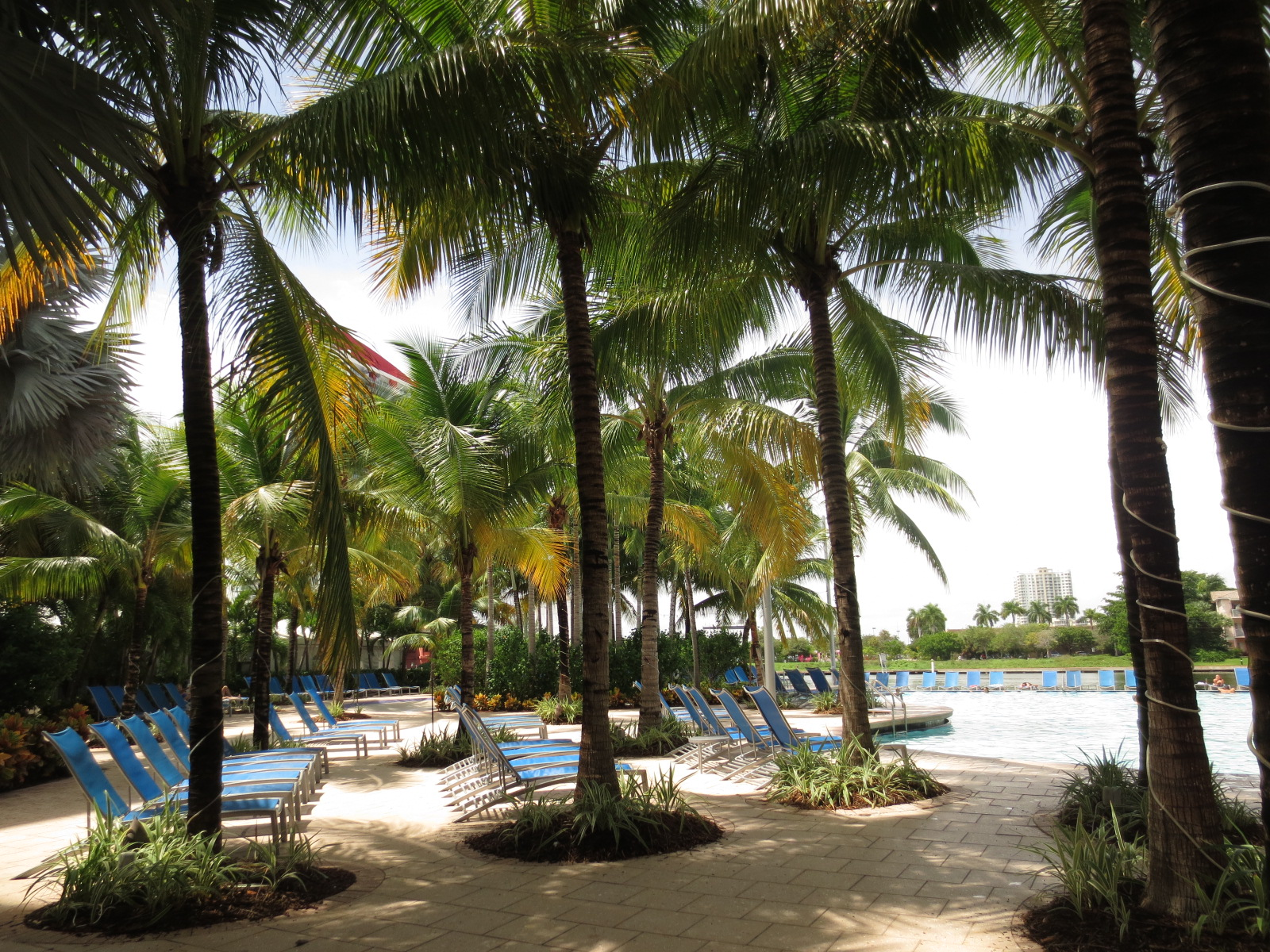 Hotell-med-stor-pool-Fort-Lauderdale-FLorida-TravelGrip