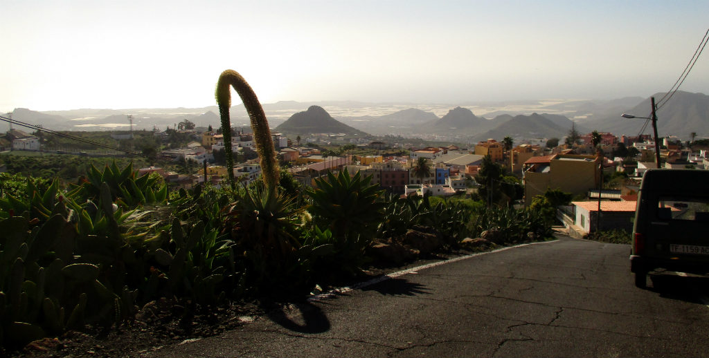 Roadtrip-pa-Teneriffa-TravelGrip- (2)