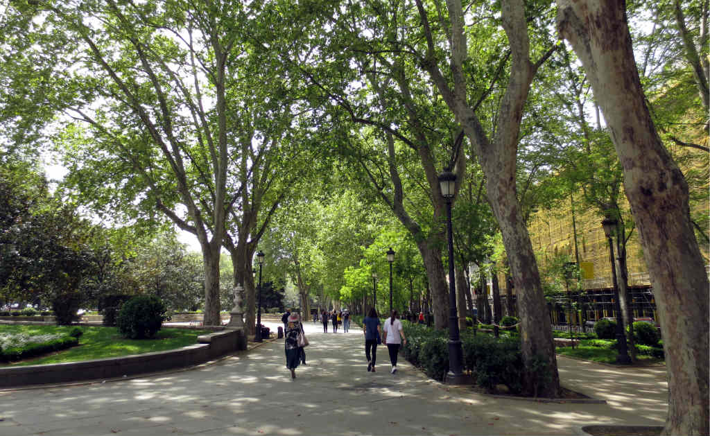 Park intill Palacio de Cibeles