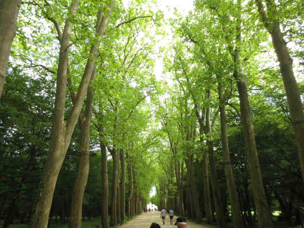 Chenonceau i Loiredalen