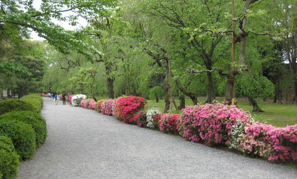 Färgglad park i Kyoto