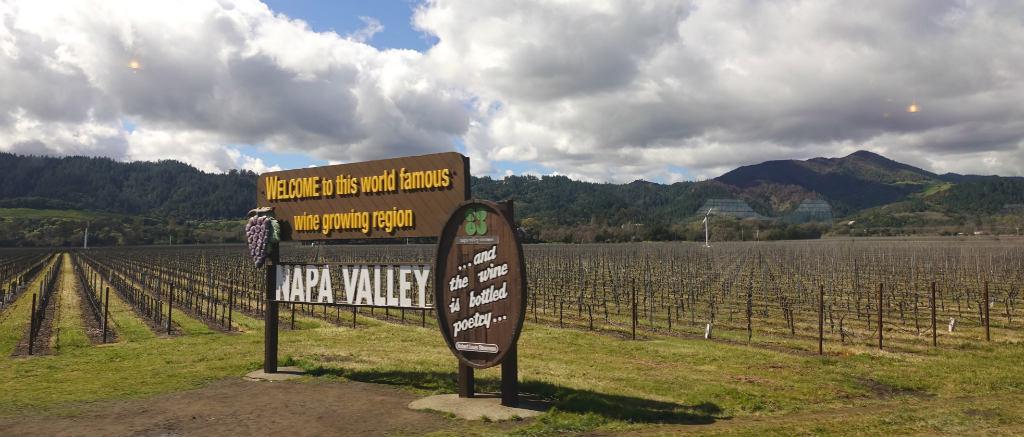vingårdar i Napa i Kalifornien
