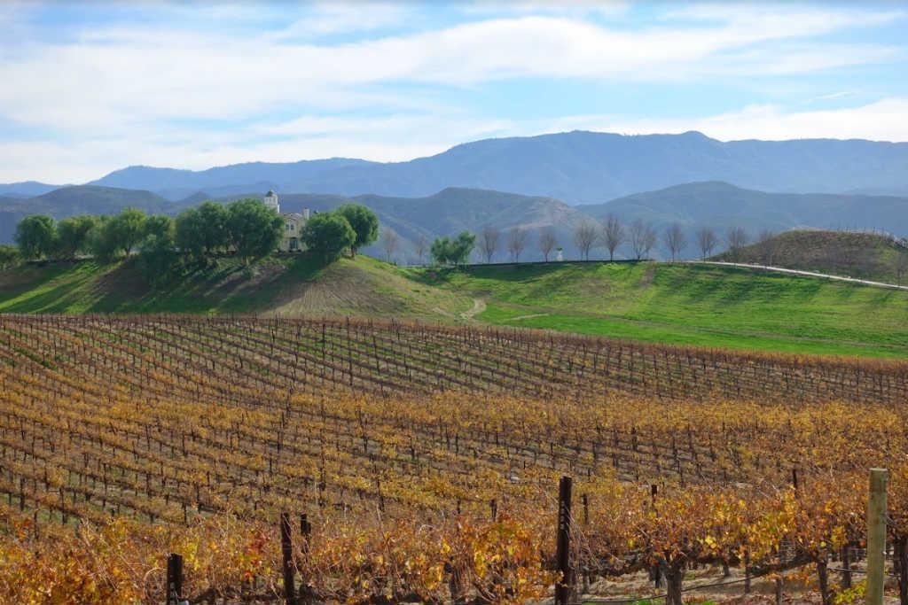 vingårdar i Kalifornien