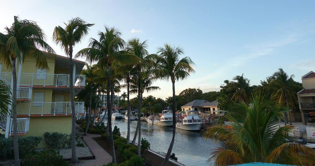dating tjänster Orlando Floridatopp 10 online dating webbplatser 2012